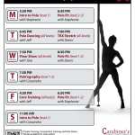 Pole Fitness Schedule Fall 2015